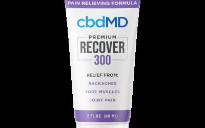 CBD Recover Squeeze, Cream