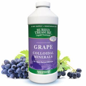 Buried Treasure Grape Colloidal Mineral Complex