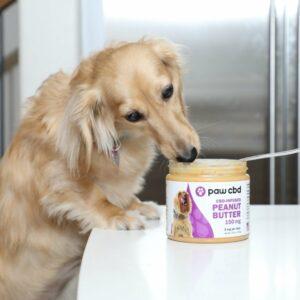 cbd peanut butter for dogs